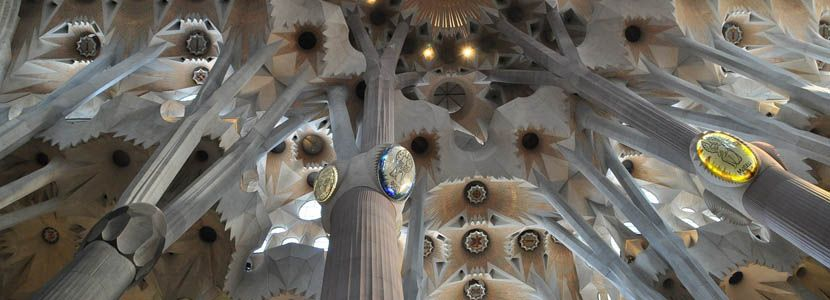 Shows the inside ceiling of Sagrada Familia