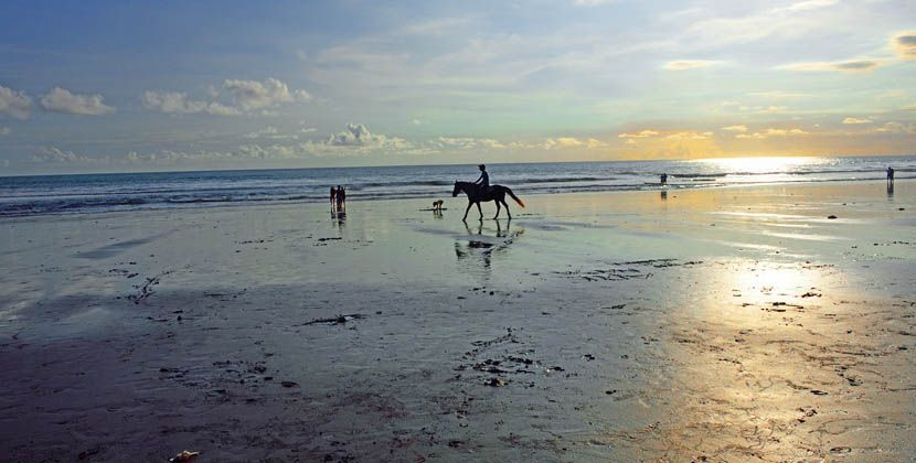 Things to do in the Algarve - Shows a girl horse riding on the beach