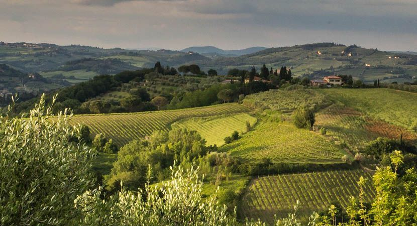 Shows the vast countryside of Tuscany