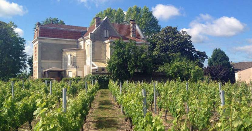 Shows a wine tasting chateau