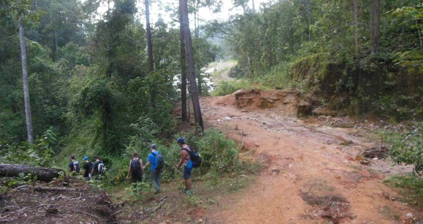 Chiang Mai trekking in the jungle - Best places to visit in Thailand