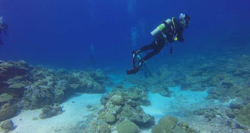 Ko Tao scuba diving