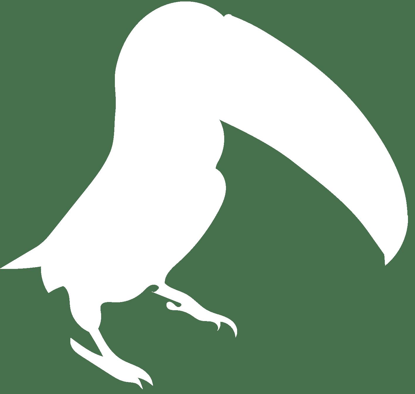 Toucan icon white