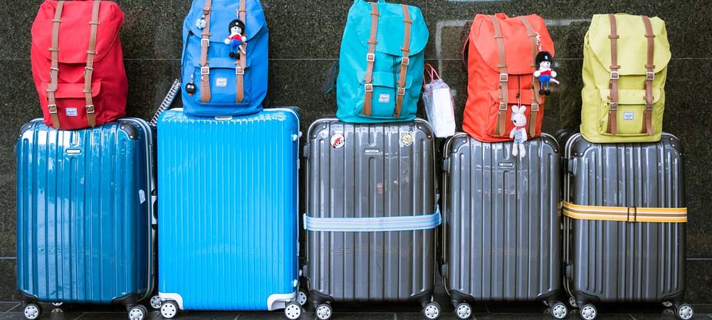 Shows a line of suitcases for the whole family