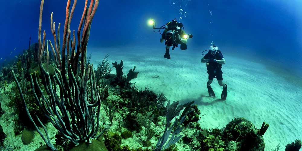 Scuba diving - Adventurous things to do in Bali