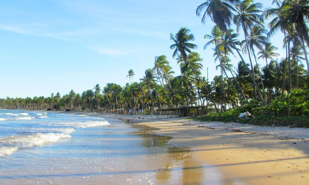 NYE destinations - Shows the golden sand beaches of Bahia, Brazil