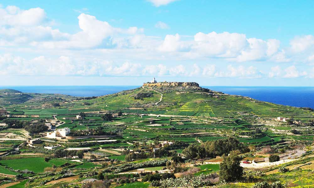 Gozo and Malta wine tasting tour
