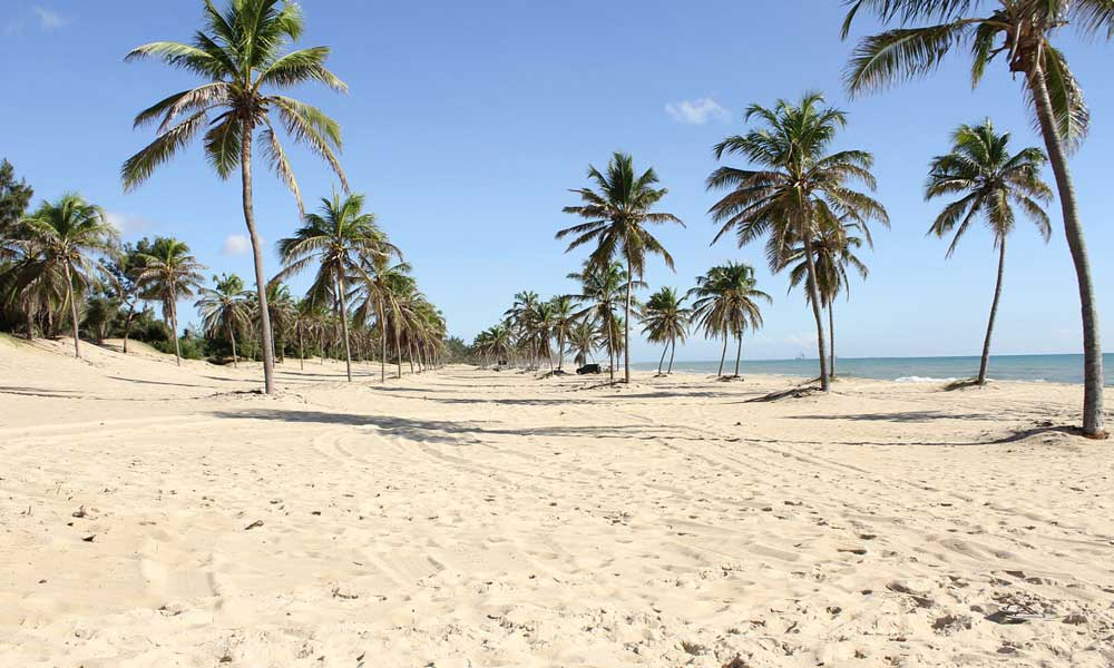 Where to go on holiday this year - North Brazil