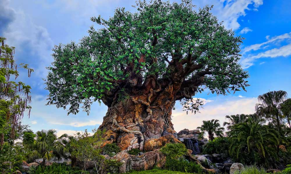 Best Orlando theme parks - Disney's Animal Kingdom tree of life