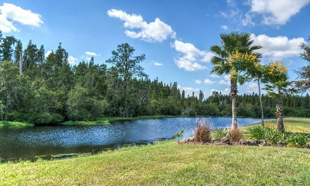 Budget Orlando 2 week itinerary - depicts natural reserve