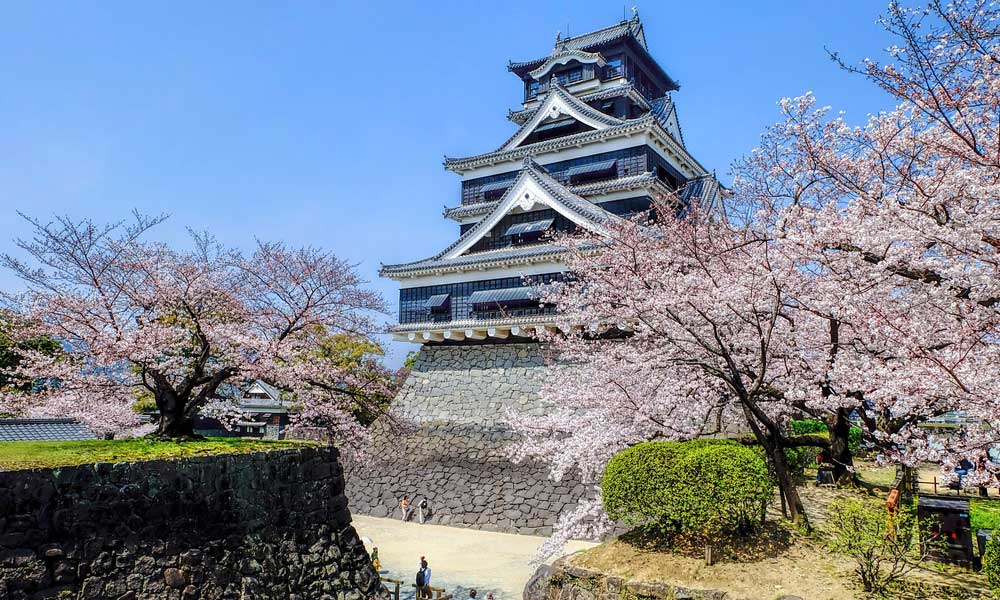 Depicts Japan in April - Blossom trees and an ancient castle