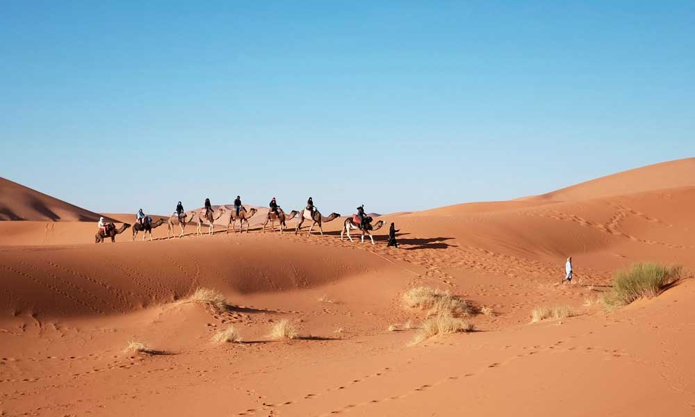 Best adventure holiday destinations - depicts camel riding in the dessert