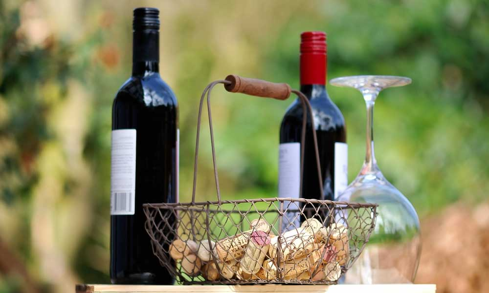 Things to do in Novalja - Shows bottle of wine - wine tasting