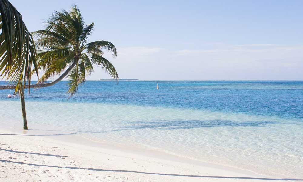 Scheduled airline failure - Shows a tropical beach in the Maldives