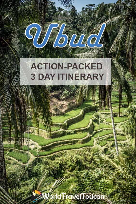 Shows the jungle and rice fields of Ubud - Pinterest image - 3 days in Ubud