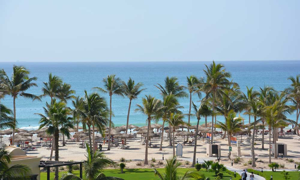 Shows a beach with palm trees in Oman - November holiday ideas