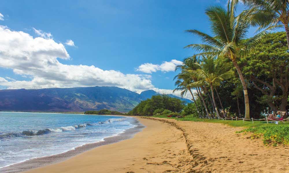 Shows a paradise beach in Hawaii - 2020 beach holiday ideas