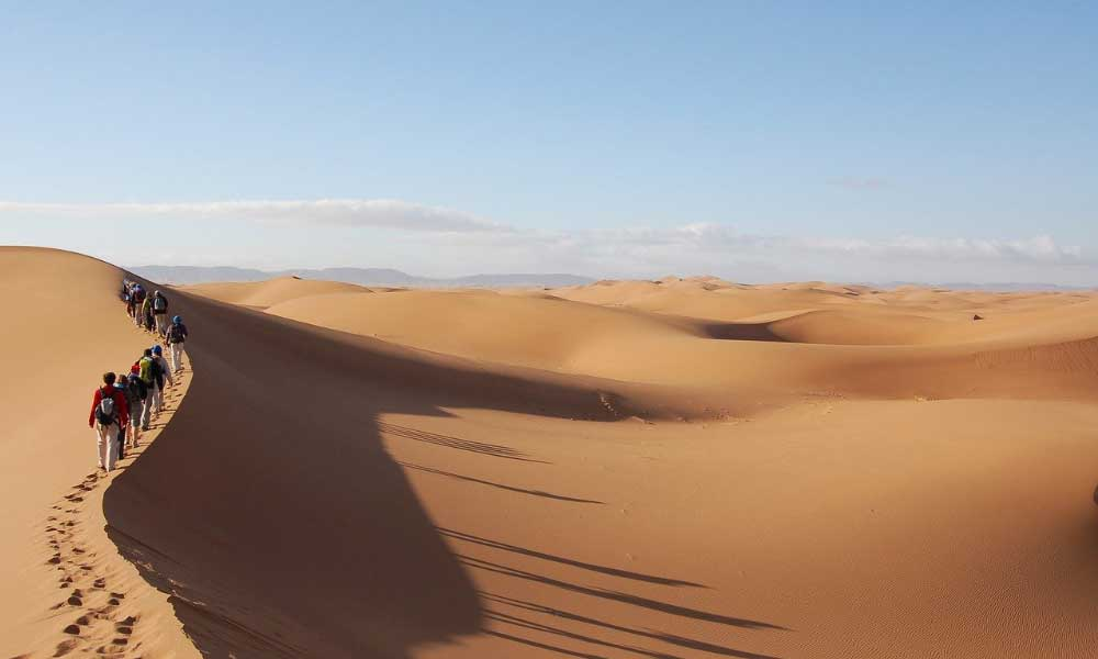 Shows a group trekking across the Sahara desert