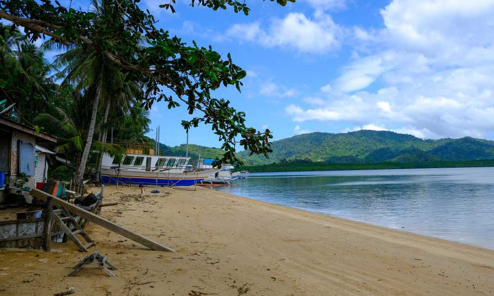 Where to stay in Palawan - Shows quiet beach with palm tree and boat