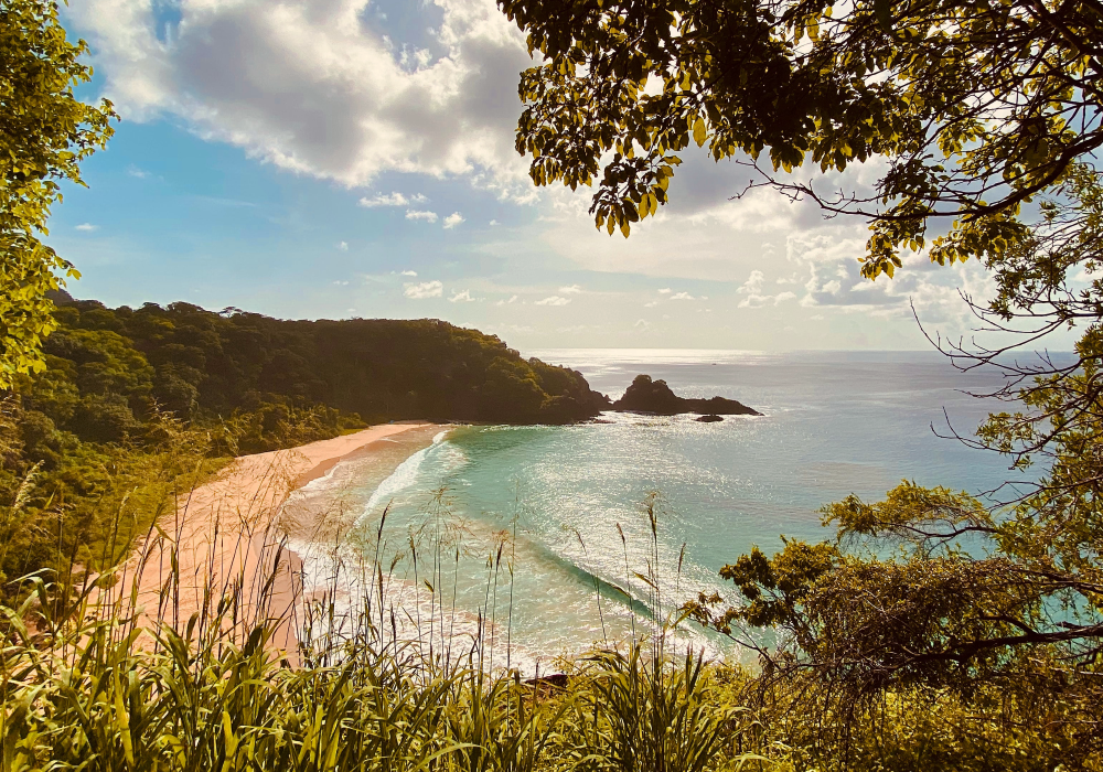 Depicts a picturesque viewpoint of a beach in Fernando de Noronha