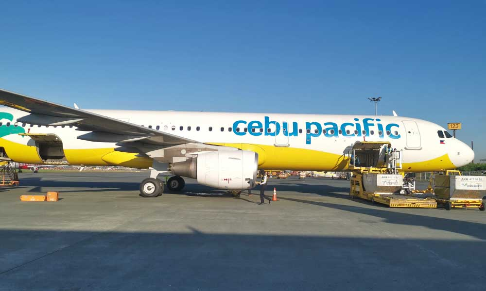 Shows Cebu Pacific aeroplane at the airport