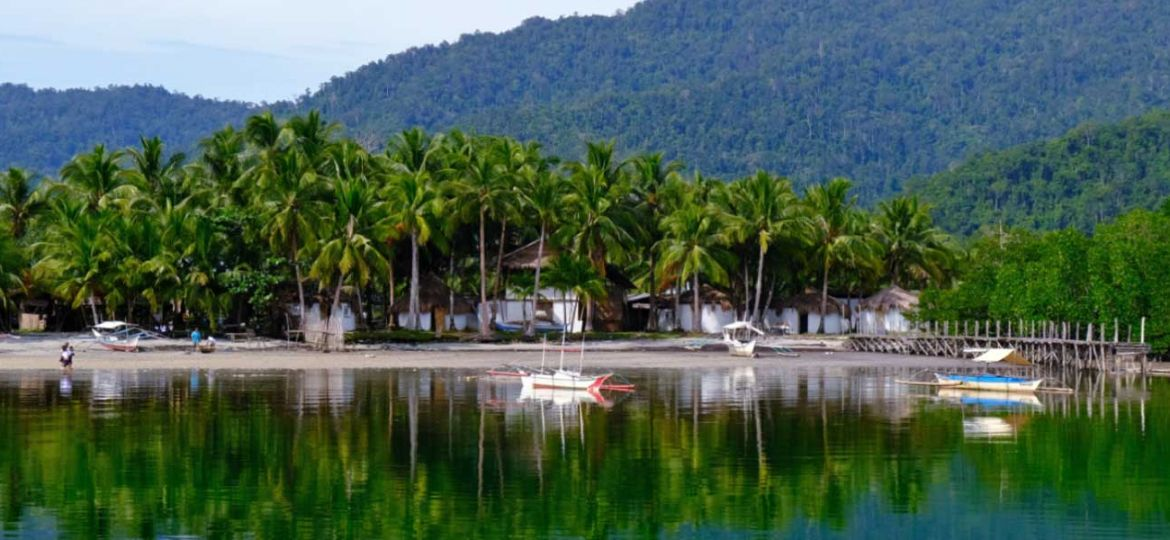 One Life Adventures Philippines tour review - shows beach and forest from a boat
