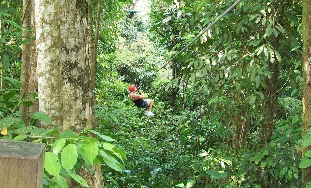 Woman zip-lining through the forest at Langkawi Canopy Adventures