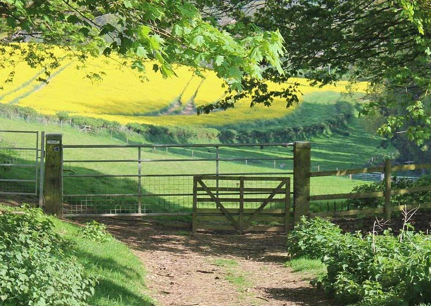 The best places to stay in the Cotswolds - Shows green countryside path