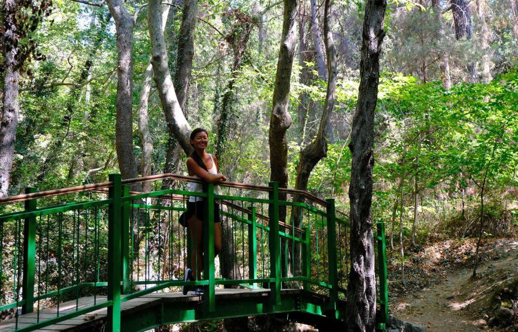 Pano Platres forest trek - Susie on a bridge