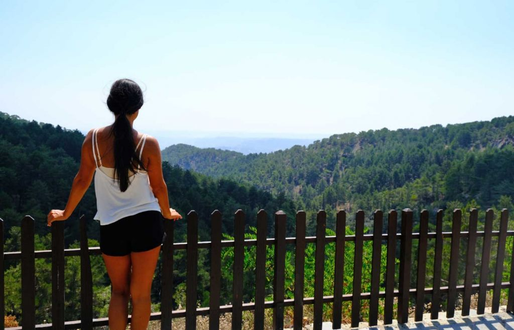 Shows a bear overlooking a viewpoint in the Troodos Mountains