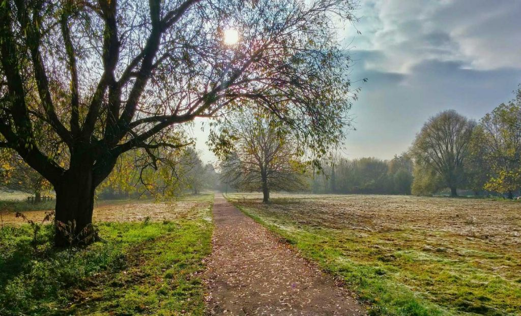 Best things to do in Cambridge - Shows Jesus Green Park in autumn