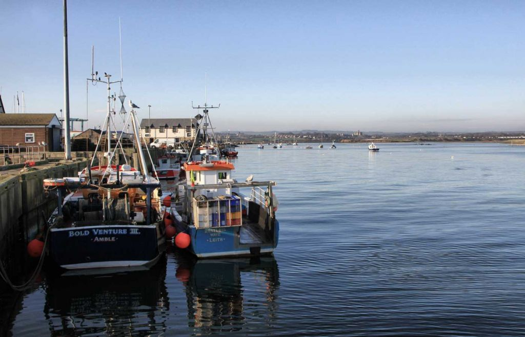 Boats floating in the harbour at Amble town